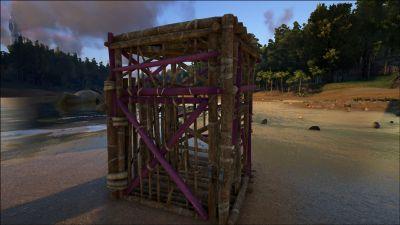 Wooden Cage PaintRegion6.jpg
