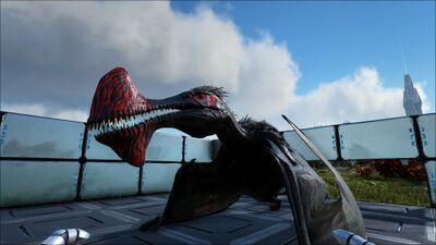 Tropeognathus PaintRegion2.jpg