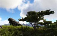 Grasslands 3.jpg