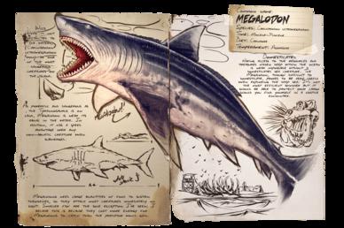 Dossier Megalodon.png