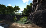 Jungle 5.jpg