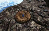 Lava Island 4.jpg
