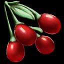 Tintoberry.png