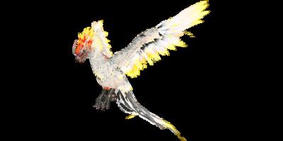 Phoenix PaintRegion4.png