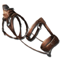 Chalicotherium Saddle.png