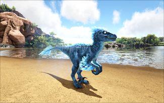 Mod Ark Eternal Elemental Ice Raptor (Wild) Image.jpg