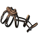 Yutyrannus Saddle.png