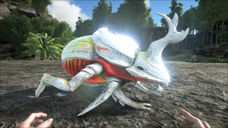 File:Dung Beetle PaintRegion5.jpg
