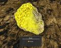Sulfur node.png