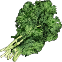 Wild Greens.png