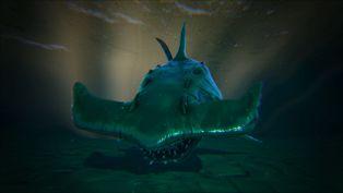 Shark Image.jpg