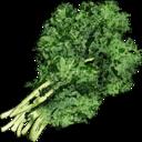 Wild Vegetable.png