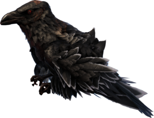 Crow.png