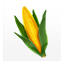 Corn icons 01.png