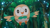 Rowlet do Ash.png