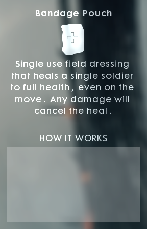 Info Bandage Pouch.png