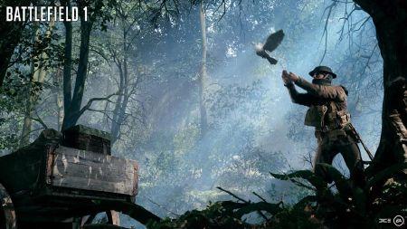 War pigeons.jpg