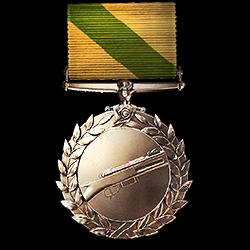 Medic Order of Valor.png
