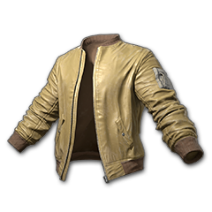 Icon equipment Jacket Bomber Jacket (Mustard).png