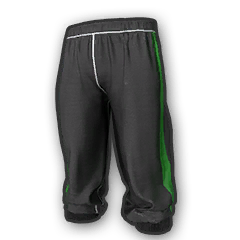 Icon equipment Legs Xbox G Sweatpants.png