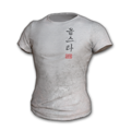 Icon equipment Body 2018 PUBG ALL-STAR T-shirt.png