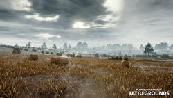 Download 6200 Wallpaper Pubg Miramar HD Terbaik