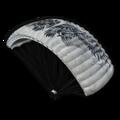 Icon gear Parachute Triumphant Survivor skin.png