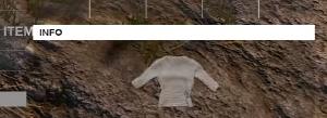 Shirt white.png