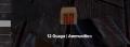 12 guage ammo.png