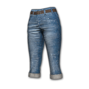 Icon equipment Legs VK Pants.png