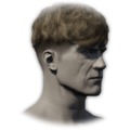 Icon Hair Hairstyle 17.png