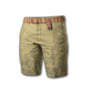 Icon equipment Pants Beach Shorts (Beige).png