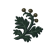 Icon herb.png