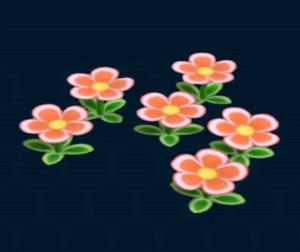 Euphorbia milii.png