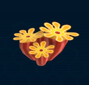 Heliophyllum.png