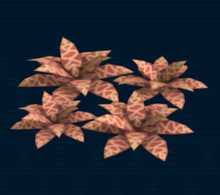 Autumn fern.png