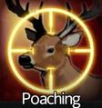 Poaching.png