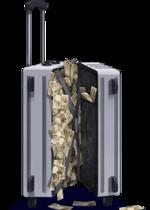 Suspicious Suitcase.png