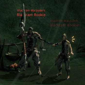 Blackram Rookie.jpg