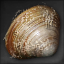 Icon for Grimy Clam.