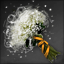 Baby's breath.png