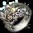 Acc awakened oathbreaker ring.png