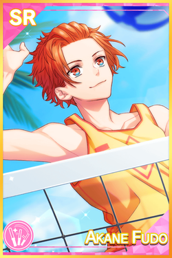 【Beach Volleyball】Akane Fudo Default.png
