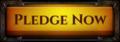 Btn pledge now 2.png