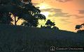 CU Sunset.jpg
