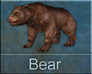 Call image for Bear