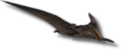 Croppedpterano.png