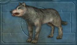 Menu image of Wolf