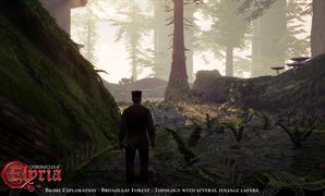 Chronicles-of-elyria-biome-exploration-broadleaf-forest-topology-july-01 pre-alpha.jpg