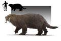 Otter Bear concept art.jpg